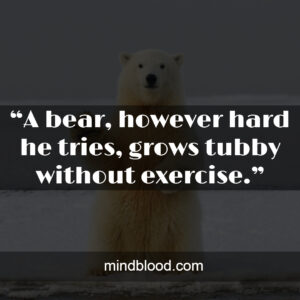 """""""A bear, however hard he tries, grows tubby without exercise."""""""