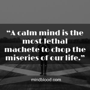 """""""A calm mind is the most lethal machete to chop the miseries of our life."""""""