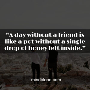 """""""A day without a friend is like a pot without a single drop of honey left inside."""""""