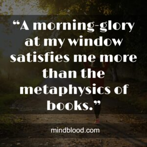 """""""A morning-glory at my window satisfies me more than the metaphysics of books."""""""