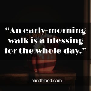 """""""An early-morning walk is a blessing for the whole day."""""""
