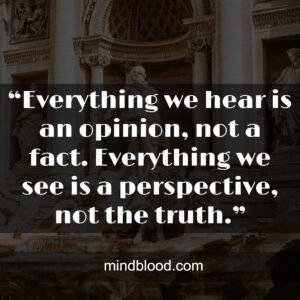 """""""Everything we hear is an opinion, not a fact. Everything we see is a perspective, not the truth."""""""