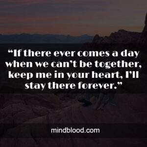 """""""If there ever comes a day when we can't be together, keep me in your heart, I'll stay there forever."""""""