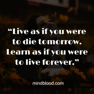 """""""Live as if you were to die tomorrow. Learn as if you were to live forever."""""""