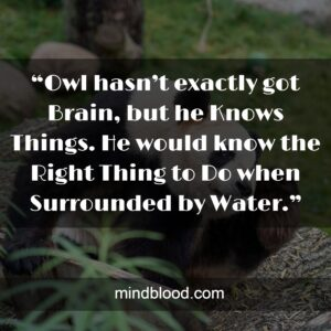 """""""Owl hasn't exactly got Brain, but he Knows Things. He would know the Right Thing to Do when Surrounded by Water."""""""