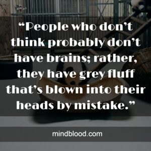 """""""People who don't think probably don't have brains; rather, they have grey fluff that's blown into their heads by mistake."""""""