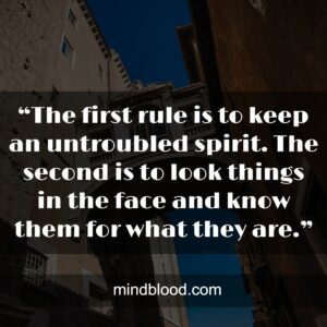"""""""The first rule is to keep an untroubled spirit. The second is to look things in the face and know them for what they are."""""""