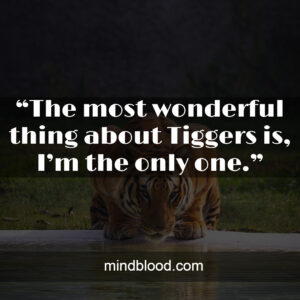 """""""The most wonderful thing about Tiggers is, I'm the only one."""""""