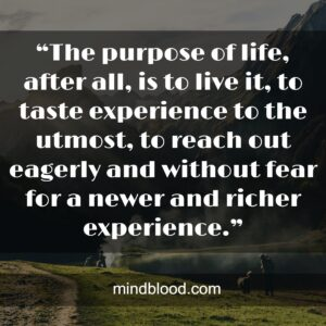 """""""The purpose of life, after all, is to live it, to taste experience to the utmost, to reach out eagerly and without fear for a newer and richer experience."""""""