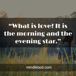 """""""What is love? It is the morning and the evening star."""""""