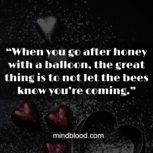 """""""When you go after honey with a balloon, the great thing is to not let the bees know you're coming."""""""