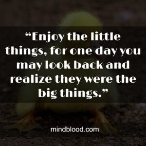 """""""Enjoy the little things, for one day you may look back and realize they were the big things."""""""