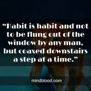 """""""Habit is habit and not to be flung out of the window by any man, but coaxed downstairs a step at a time."""""""
