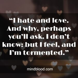 """""""I hate and love. And why, perhaps you'll ask. I don't know: but I feel, and I'm tormented."""""""