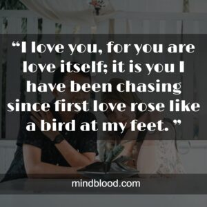 """""""I love you, for you are love itself; it is you I have been chasing since first love rose like a bird at my feet. """""""