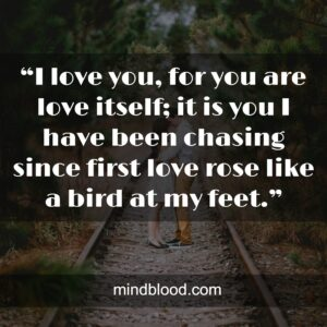 """""""I love you, for you are love itself; it is you I have been chasing since first love rose like a bird at my feet."""""""