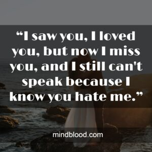 """""""I saw you, I loved you, but now I miss you, and I still can't speak because I know you hate me."""""""