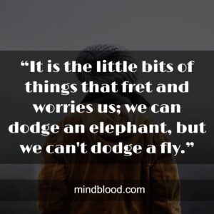 """""""It is the little bits of things that fret and worries us; we can dodge an elephant, but we can't dodge a fly."""""""
