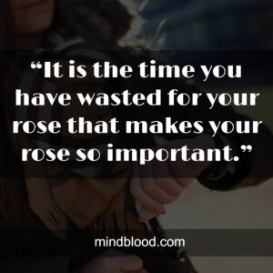 """""""It is the time you have wasted for your rose that makes your rose so important."""""""