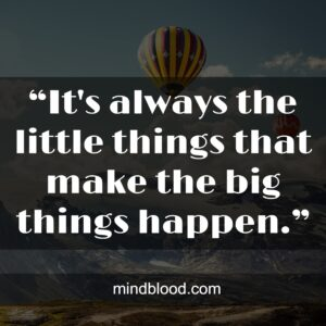 """""""It's always the little things that make the big things happen."""""""