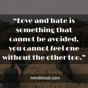 """""""Love and hate is something that cannot be avoided, you cannot feel one without the other too."""""""