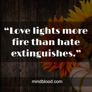 """""""Love lights more fire than hate extinguishes."""""""