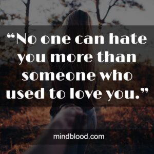 """""""No one can hate you more than someone who used to love you."""""""