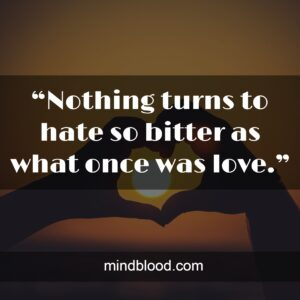 """""""Nothing turns to hate so bitter as what once was love."""""""