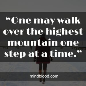 """""""One may walk over the highest mountain one step at a time."""""""