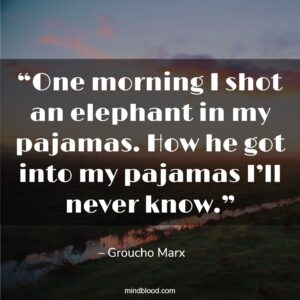"""""""One morning I shot an elephant in my pajamas. How he got into my pajamas I'll never know."""""""