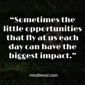 """""""Sometimes the little opportunities that fly at us each day can have the biggest impact."""""""