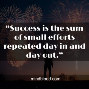 """""""Success is the sum of small efforts repeated day in and day out."""""""