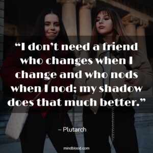 """""""I don't need a friend who changes when I change and who nods when I nod; my shadow does that much better."""""""