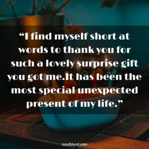 """""""I find myself short at words to thank you for such a lovely surprise gift you got me.It has been the most special unexpected present of my life."""""""