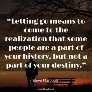 """""""Letting go means to come to the realization that some people are a part of your history, but not a part of your destiny."""""""