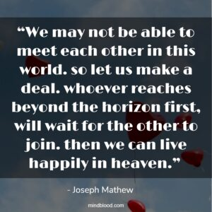 """""""We may not be able to meet each other in this world. so let us make a deal. whoever reaches beyond the horizon first, will wait for the other to join. then we can live happily in heaven."""""""