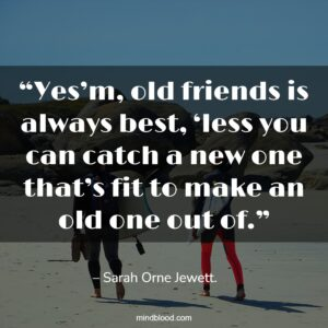 """""""Yes'm, old friends is always best, 'less you can catch a new one that's fit to make an old one out of."""""""