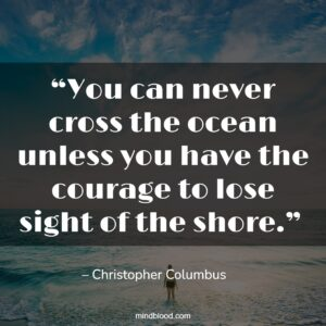 """""""You can never cross the ocean unless you have the courage to lose sight of the shore."""""""