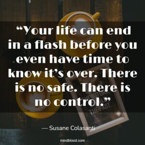 """""""Your life can end in a flash before you even have time to know it's over. There is no safe. There is no control."""""""