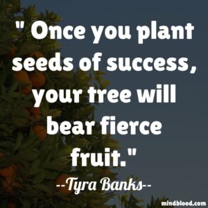 Once you plant seeds of success, your tree will bear fierce fruit