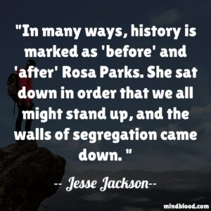 In many ways, history is marked as 'before' and 'after' Rosa Parks. She sat down in order that we all might stand up, and the walls of segregation came down.
