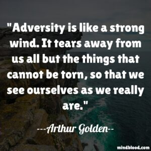 Adversity is like a strong wind. It tears away from us all but the things that cannot be torn, so that we see ourselves as we really are.
