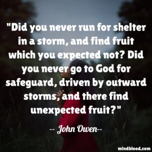 Did you never run for shelter in a storm, and find fruit which you expected not? Did you never go to God for safeguard, driven by outward storms, and there find unexpected fruit?