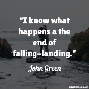 I know what happens a the end of falling-landing.