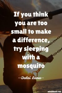 If you think you are too small to make a difference, try sleeping with a mosquito