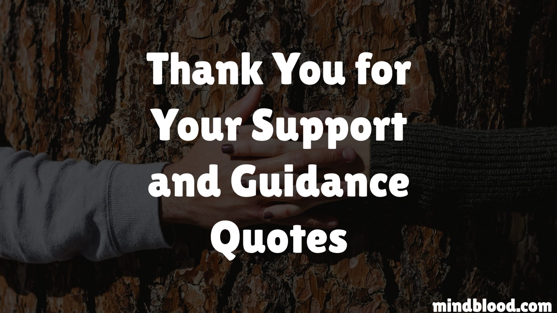 Thank You for Your Support and Guidance Quotes