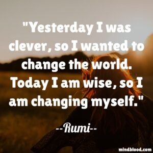 Yesterday I was clever, so I wanted to change the world. Today I am wise, so I am changing myself