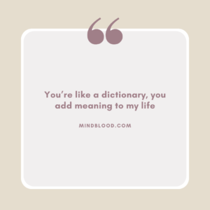 You're like a dictionary, you add meaning to my life